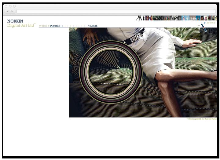Screen of a photograph on the Norkin Digital Art website.